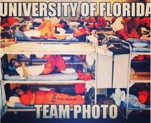 1000 Images About Proud To Be A Gator Hater On