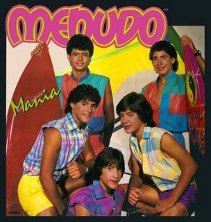 Menudo...Had a poster of them in my room. Loved me some Rick Martin then and now. (He isn't in the pic though.)