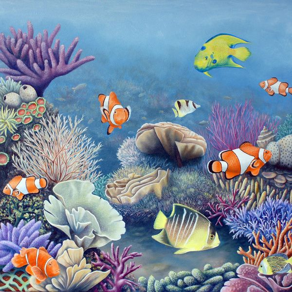 Fish Underwater Drawing 44 best images about U...