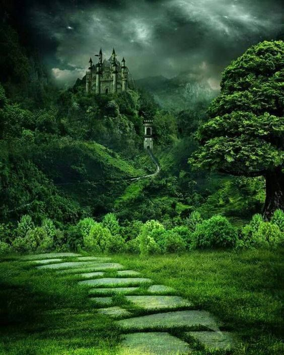New post on beautifulmysteriousforests