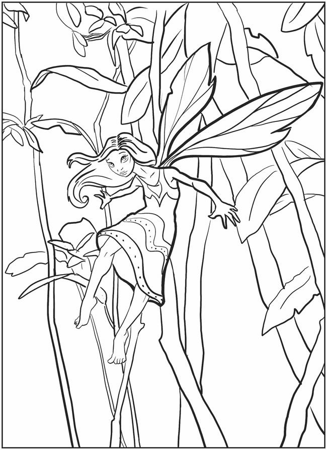 86 best Fairies images on Pinterest Coloring books, Coloring pages - new coloring pages blood blood consists of plasma and formed elements