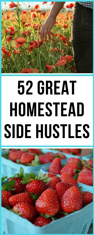 52 Ways to Make Money HomesteadingCelebrating a Simple Life