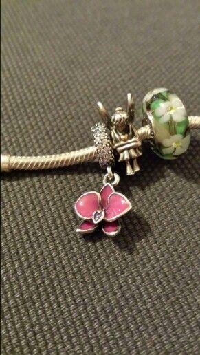 #Pandora#orchidea