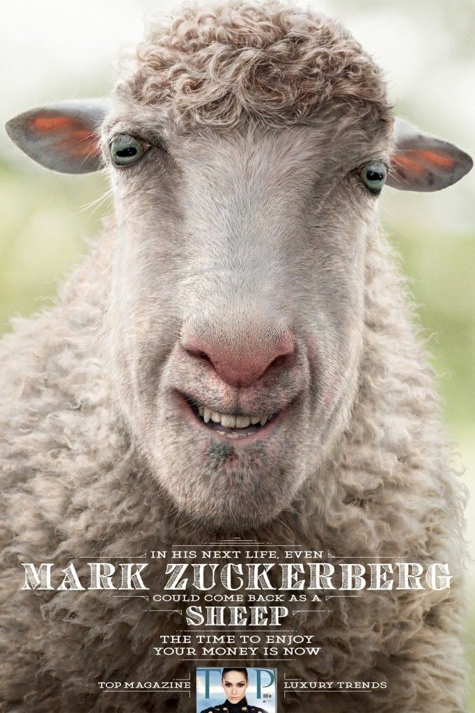 TOP Magazine: Mark Zuckerberg #Sheep Ad | http://www.gutewerbung.net/top-magazine-mark-zuckerberg-sheep/ #Advertising