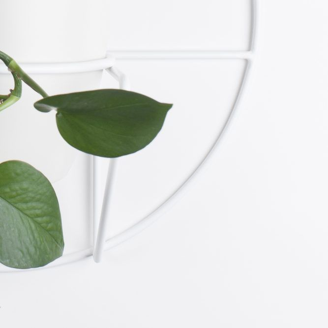 LUNO hanging plant stand | COSMO collection | BUJNIE | Beautiful and functional plant stands. #plants #plantstand #hangingplantstand #plantsarefriends #cosmo #bujnie #hanging #jungle #botanical #floral #design #product