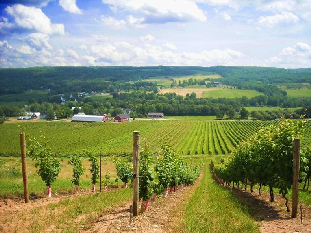 Annapolis Valley, Nova Scotia (Canada).  Be sure to check out Blomidon Provincial Park, the Cape Split hike, the wineries, and delicious seafood.
