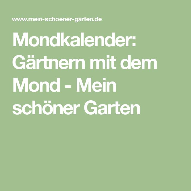 Mondkalender: Gärtnern mit dem Mond - Mein schöner Garten