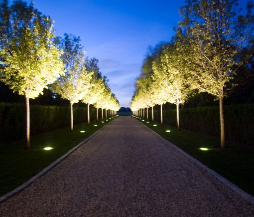 Go Tuscan - This stunning driveway is created by using with up-lighting placed under the long strip of trees which flank the border.  >> Click for more Driveway Ideas!
