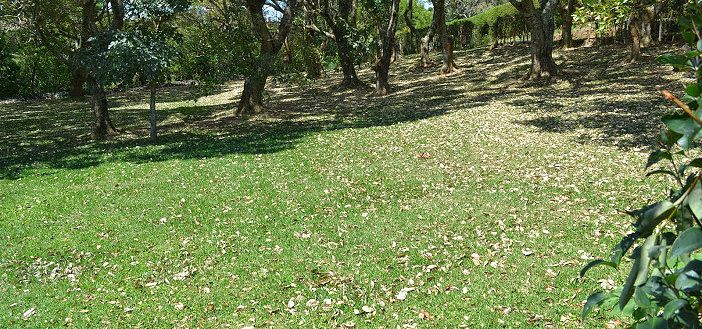 For Sale By Owner: Beautiful and Buildable Costa Rica Lot San Isidro Heredia
