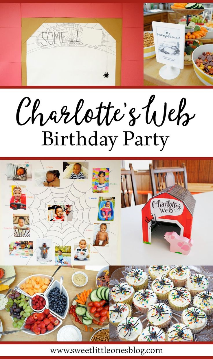 images about diy holidays celebrations charlotte s web birthday party simple and inexpensive diy signs banners