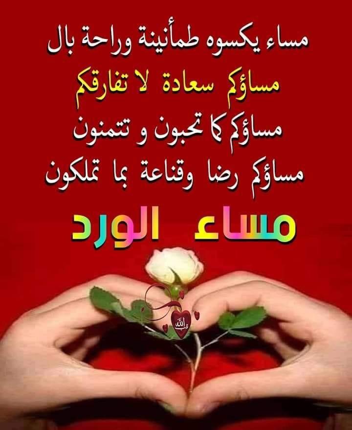 Pin By Ahmed Hisen أحمد حسين On مساء الورد صباح الورد Good Evening Wishes Lovely Quote Quotes