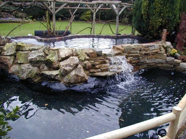 Искусственные водоемы и пруды. Строительство садовых прудов