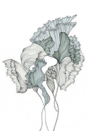 Piet Boon Styling by Karin Meyn   Ivy flower