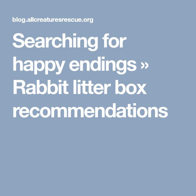 Searching for happy endings » Rabbit litter box recommendations