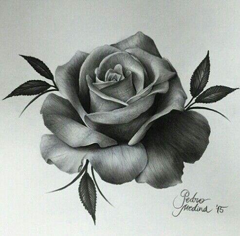 25 gorgeous single rose tattoos ideas on pinterest rose tattoos rose light blue white and cream urmus Images