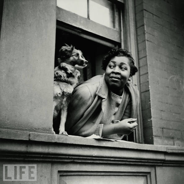 : Photos, African American, Libraries Of Congress, Dogs, New York, Black History, 1943, Harlem, Gordon Parks
