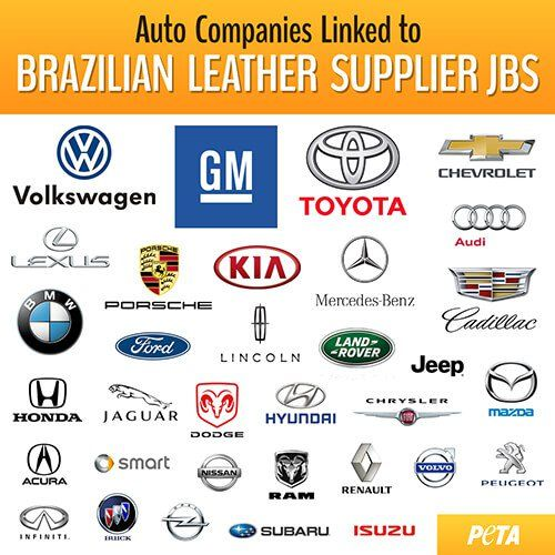 Calves Dragged and Face-Branded for Leather Car Interiors - What happens in the leather industry will make you reconsider buying a car with a leather interior ever again.