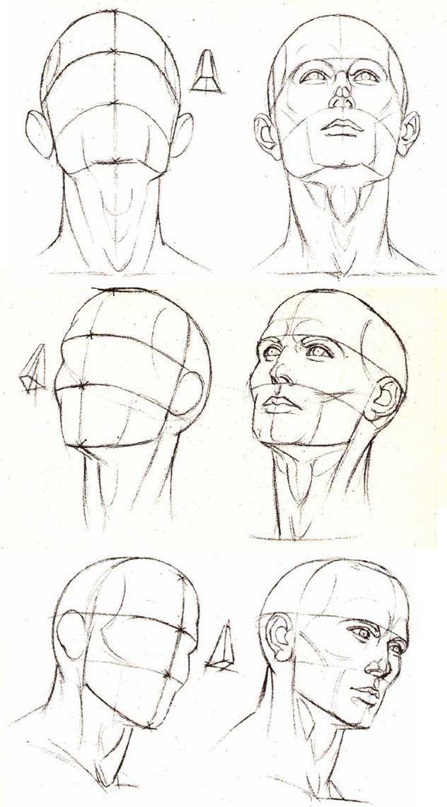 Pin De Zhenya Urban En Como Dibujar Dibujar Rostros Arte De Anatomia Humana Dibujos Figura Humana
