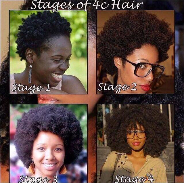 stages of 4c natural hair twa '