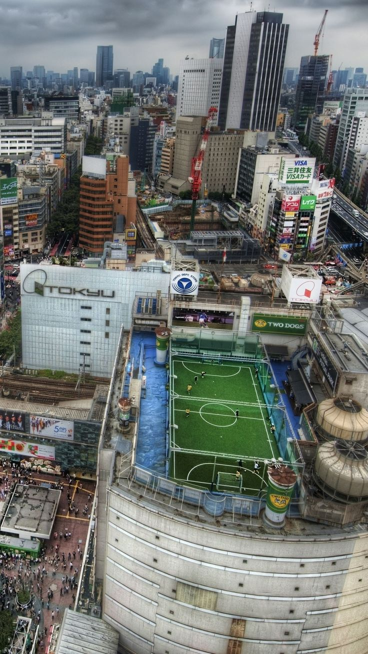 tokyo, house, football, metropolis, field, people, roofs, crowds, japan, road, hdr