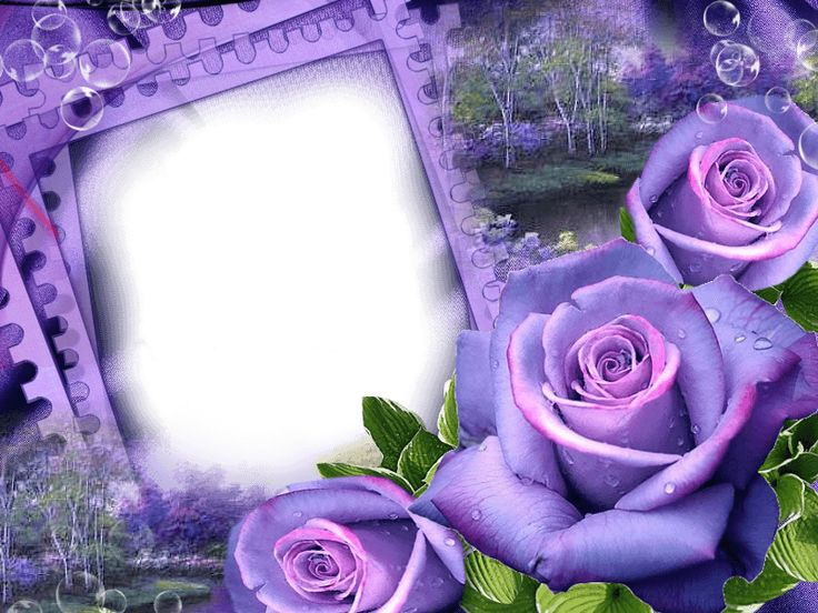 Free Digital Printable Transparent PNG Picture Frames