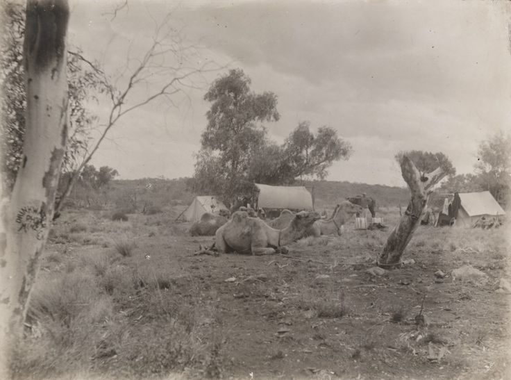 5458B/4: Bitter Rocks, Warburton Range. Prospecting expedition from Laverton to Mt Charles by W. Carr-Boyd, G.A. Drinkwater and F.M. Bankier, 4 June-20 November 1904 (Click to Start Zoom)