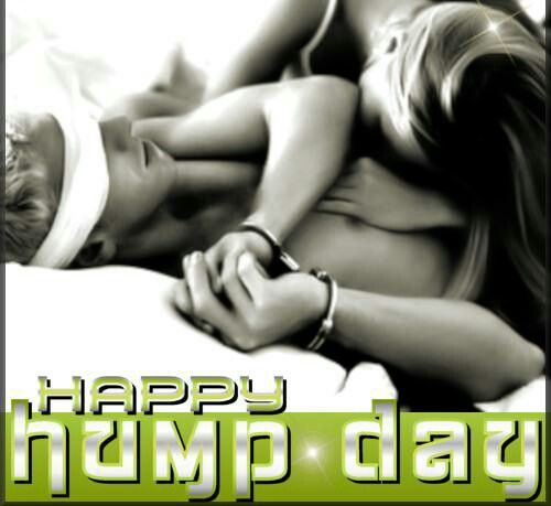 Image result for happy hump day erotic
