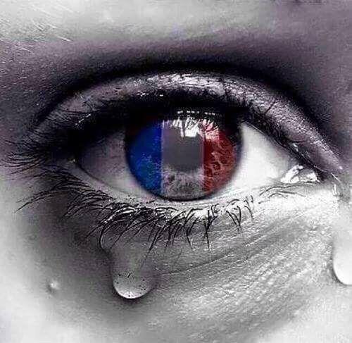 Yo soy FRANCIA.  NO al terrorismo.