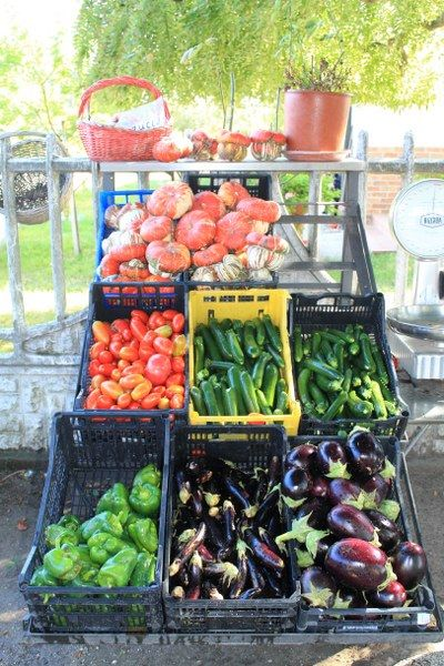 homegrown vegetables from Vignole restaurant