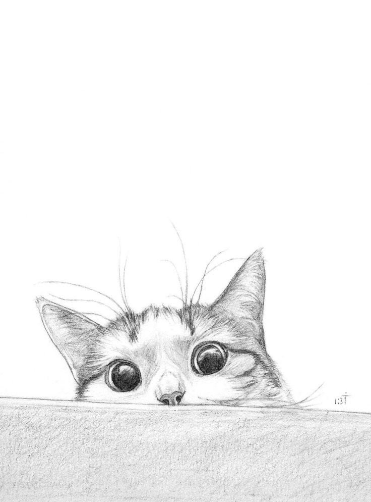 Прикольные картинки животных в карандаше, россии картинки