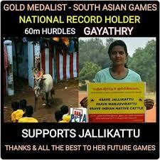 Image result for tamil jallikattu memes