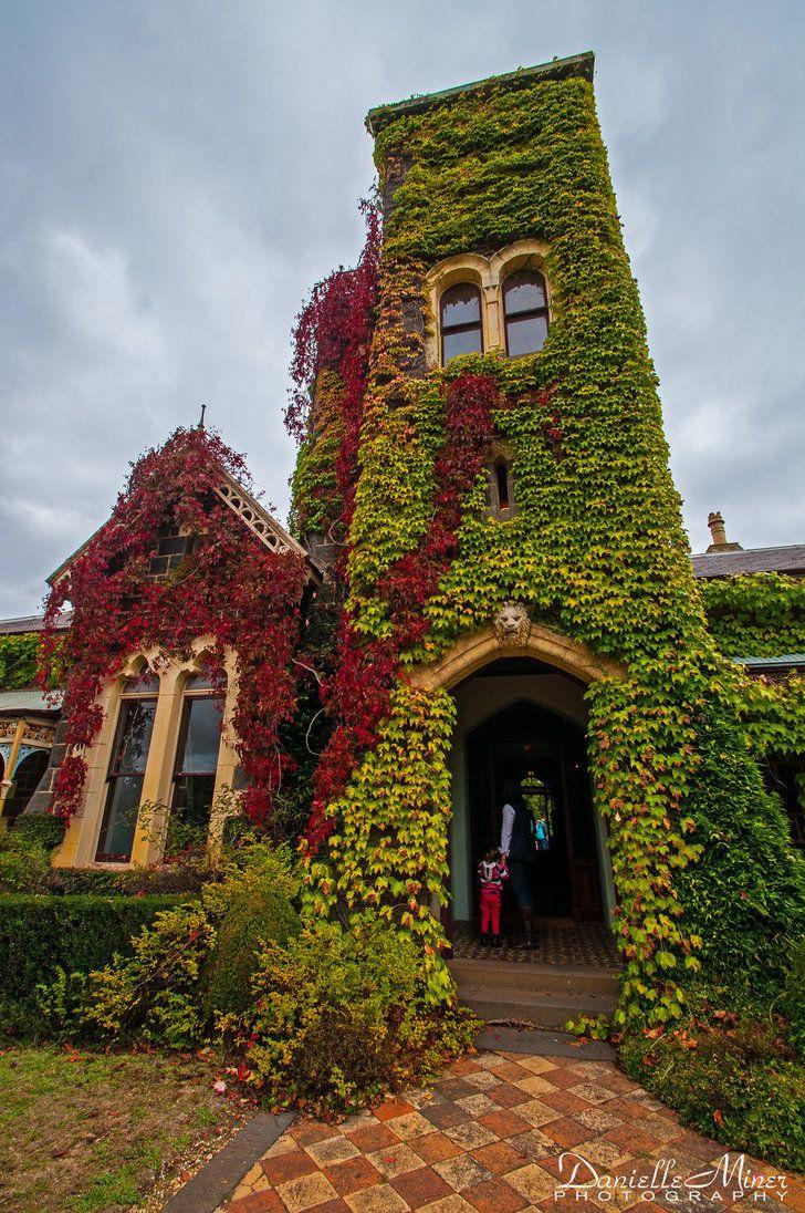 'Narrapumelap', Wickliffe in western Victoria. It's bluestone under all that ivy!
