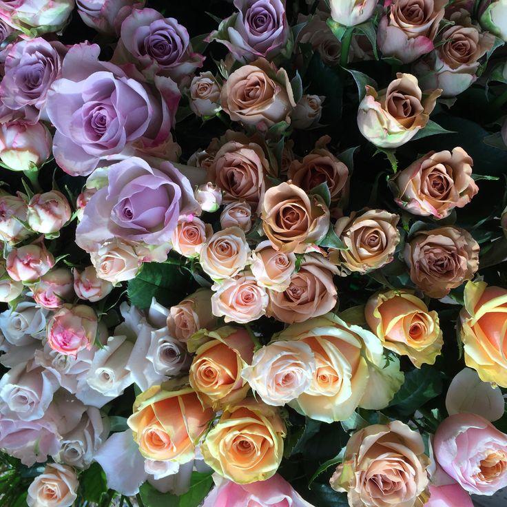 Scrummy Roses www.theenchantedflower.co.uk