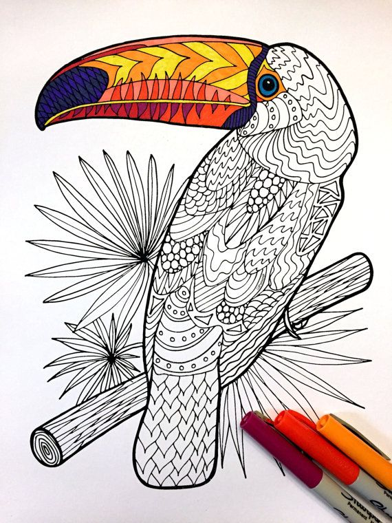 Toucan PDF Zentangle Coloring Page por DJPenscript en Etsy