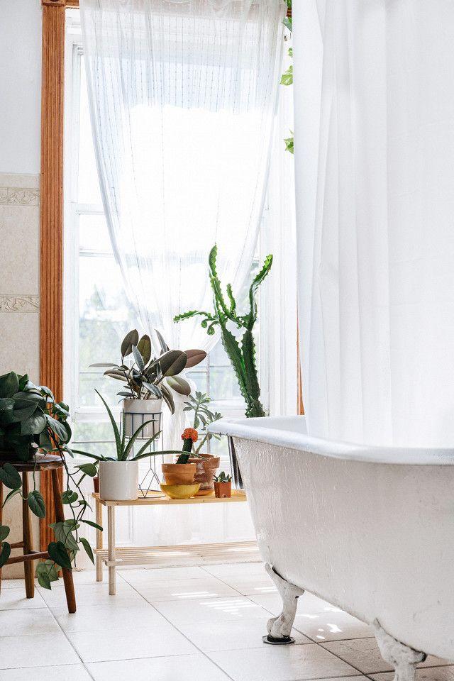 freistehende badewanne und schne pflanzen perfektes badezimmer - Badezimmer Grn