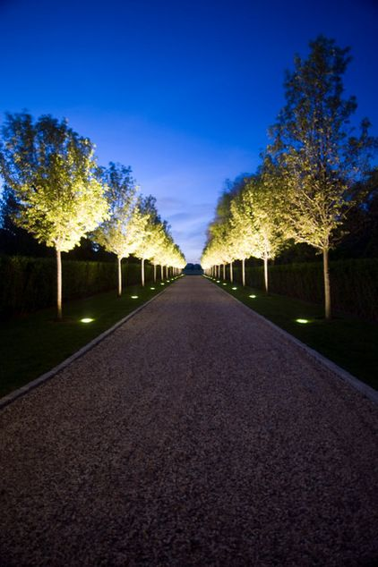 Define a path. Though this path is clearly defined by the landscape, the underlit trees make nocturnal passage unforgettable.