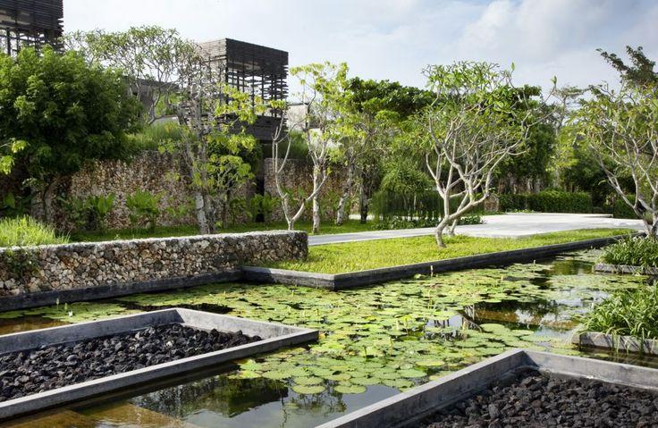 cicada landscape architects / alila villas uluwatu, bali (architecture: woha)