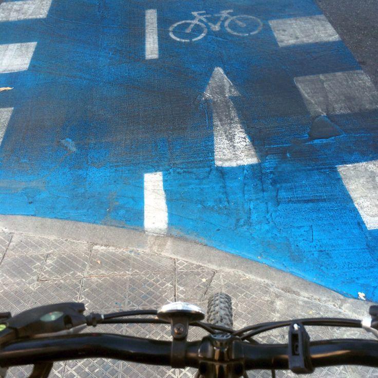Paseo en Bici. Ciclovía Antonio Varas.