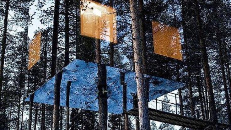 Reflective treehouse