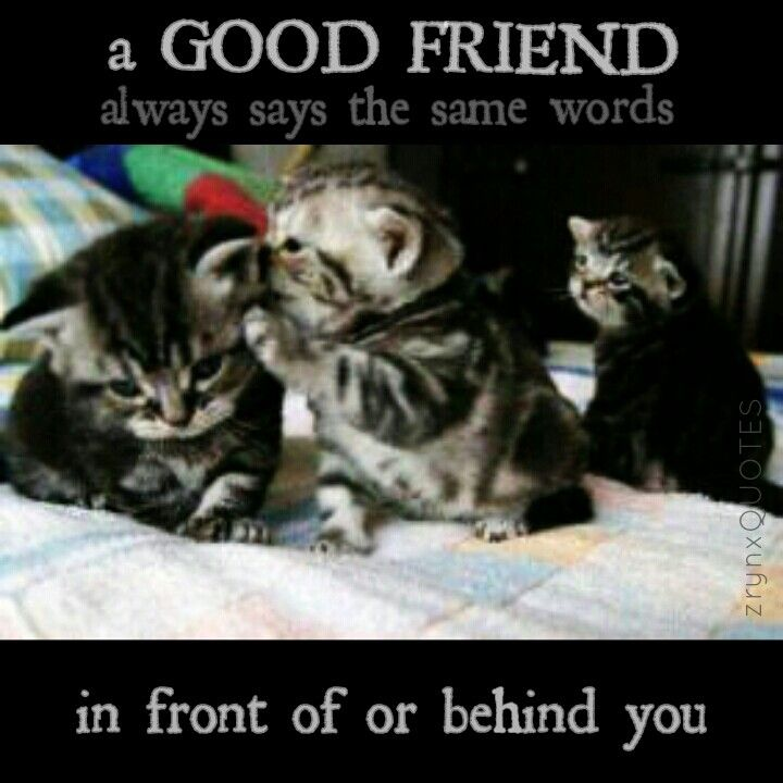 a GOOD FRIEND. always says the same words.   in front of or behind you.
