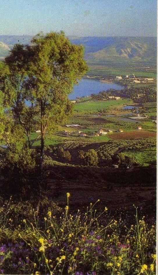 The Jordan River Valley, Israel...I actually went tubing down the Jordan. 1987