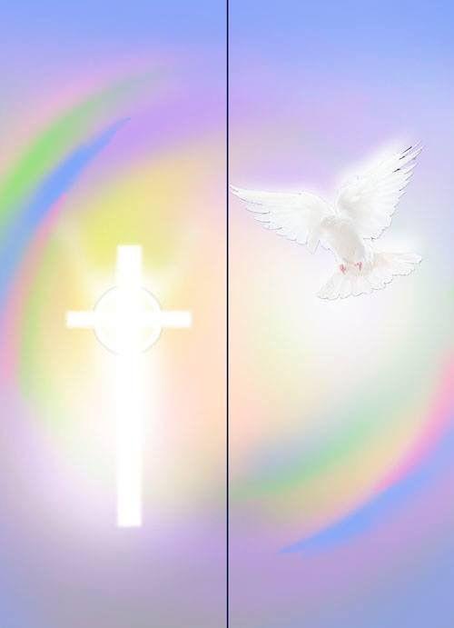 pentecost 2015 nz
