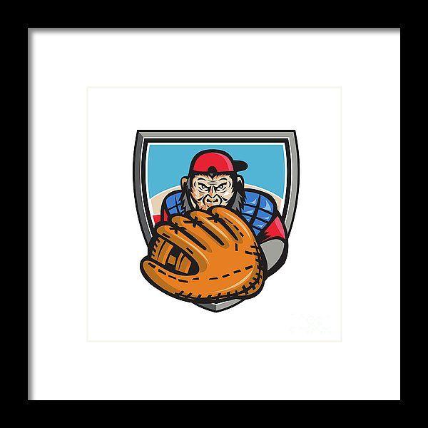 Chimpanzee Baseball Catcher Glove Shield Retro Framed Print by Aloysius Patrimonio.   Illustration of chimpanzee baseball player catcher with glove in front set on isolated white background done in retro style. #illustration #ChimpanzeeBaseballCatcher