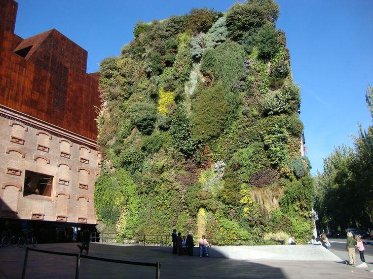 Jardin vertical - Madrid.