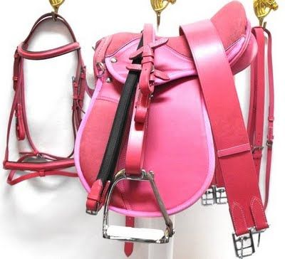 Pink Saddle and Tack!!