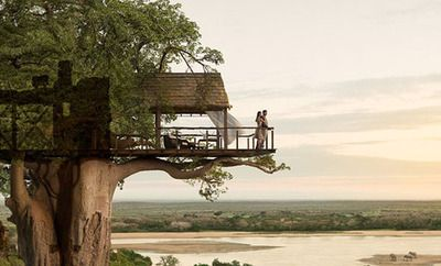 Tree house hotel in Africa.