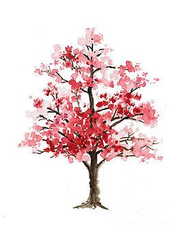 Cherry blossom tree minimalist watercolor painting…