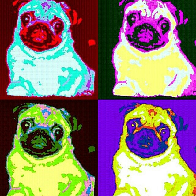 The other face of Pop Art | Andy Warhol, Warhol and Pop Art