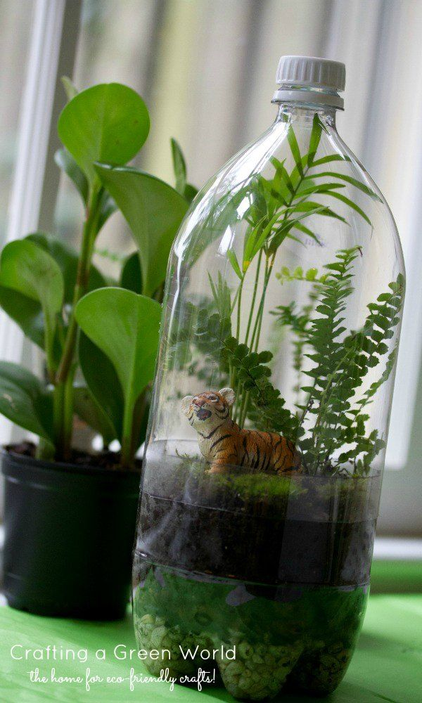 This awesome, upcycled twist on the classic terrarium DIY is a miniature rainforest in a bottle!