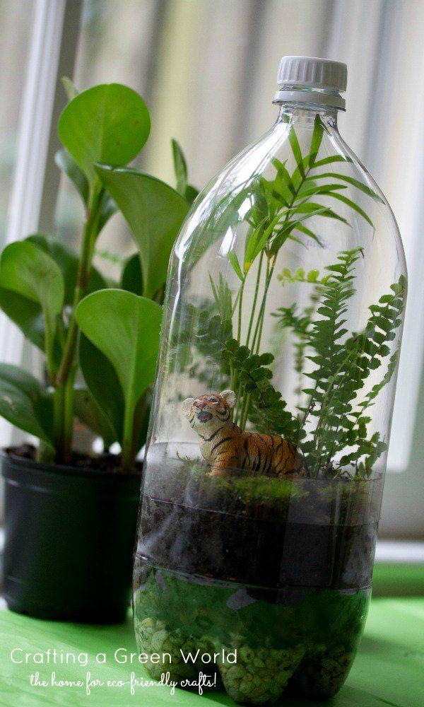 Terrario DIY: Gire una vieja botella de soda en una selva tropical en miniatura!
